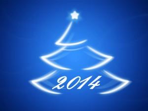 arbre-noel-2014